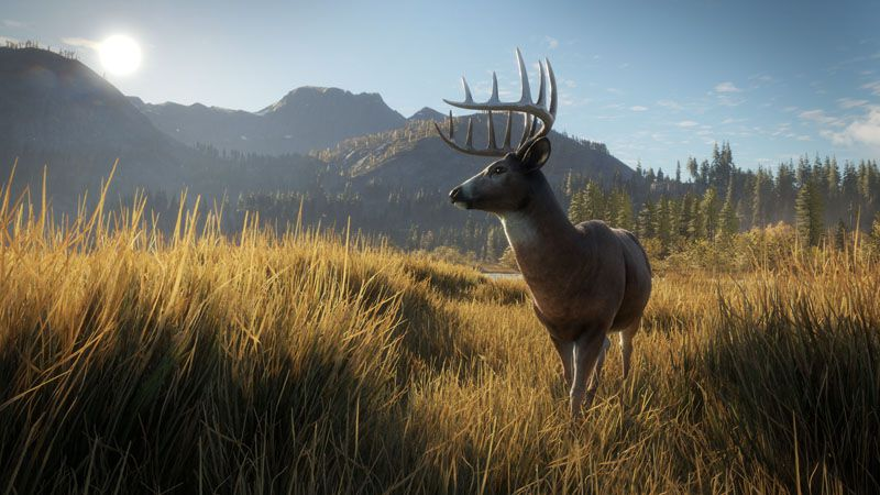 The Hunter Call Of The Wild Update 1.52 Patch Details (PS4)