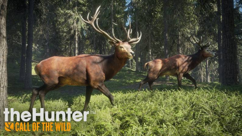 The Hunter Call Of The Wild update 1.06 PS4